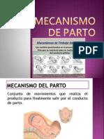 MECANISMOS DE PARTO