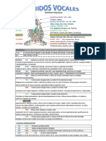 sonidos vocales PDF