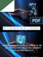 tesis-ciber