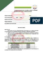 10. INVENTARIO PARA LA IDENTIFICACIÓN DE LOS NIÑOS AS.pdf