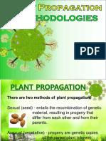 Plant-Propagation-for Tropical Plants