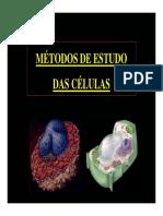 Celula Slide