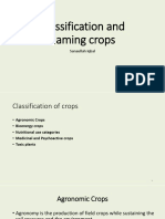 2. Classification and naming crops.pptx