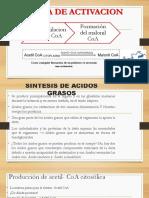 ETAPA DE ACTIVACION