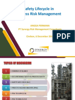 Safety Life Cycle & Process Risk Management - Synergy Dec 2019.pdf