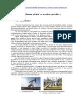 295745737-Contaminarea-solului-cu-produse-petroliere-doc