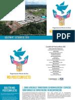 Boletin postconflicto octubre 27112018.pdf