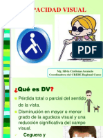 1. Discapacidad Visual OK