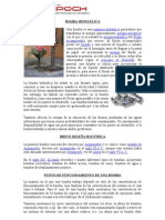 Bomba hidráulica-informe-grupoD
