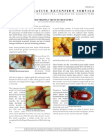 Stored Product Pests in the Pantry