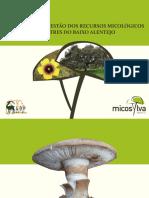 Manual Baixo Alentejo - Micosylva.pdf