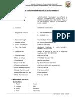 INFORME EN IMPACTO AMBIENTAL.docx