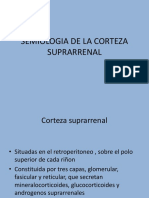 SEMIOLOGIA DE LA CORTEZA SUPRARRENAL.pptx
