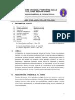 SYLLABUS UROLOGÍA 2019 II - FINAL ACTUALIZADOS FMH