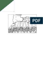 Analisis Comparativa.el Tiempo y Voz Proletaria en Relacion Con Paro Civico Nacional de 1977.2011 - コピー