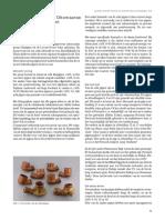 Een_bijzondere_groep_Ottomaanse_kleipijp.pdf