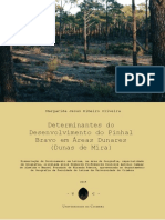 Determinantes do Desenvolvimento do Pinhal Bravo (1).pdf