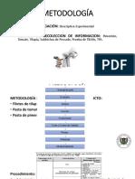 DIAPOSITIVAS JAIME.pptx