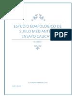CALICATA 5.docx