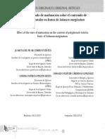Efecto del estado de maduración sobre el contenido de polifenoles totales en frutos de Solanum marginatum