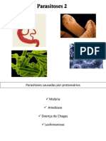 aula parasitoses - protozoários