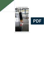 columna cromatográfica