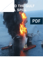 Beyond The Gulf Oil Spill