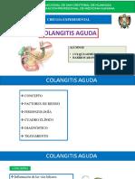 COLANGITIS-DEFINICION, EPIDEMIOLOGIA, FISIOPATOLOGIA, CLINICA, DIAGNOSTICO, TRATAMIENTO