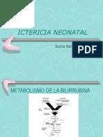 Pediatria-ICTERICIA NEONATAL