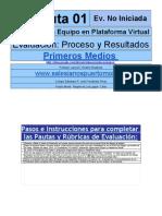 Pauta 01 Evaluación Organización Equipo y Plataforma Virtual