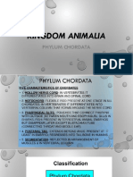 3.Phylum Chordata (1)
