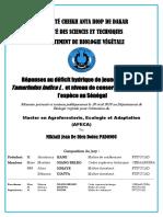Msc_Thesis Padonou_T. indica_FINAL_27avril18_revue.pdf