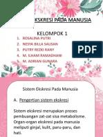 SISTEM EKSKRESI PADA MANUSIA.pptx