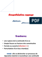 Consolidation Osseuse