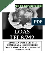 LOAS 1.pdf