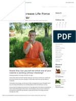 Ways to Increase Life Force Prana Energy | Sivananda Yoga Farm