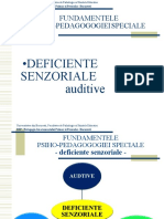 defic_SENZ3-auz.ppt