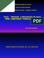 TEMA _ Anatomia_Fisiologia