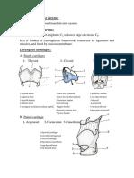 Larynx_Wrote_By_Dr_Nassem_Talaat