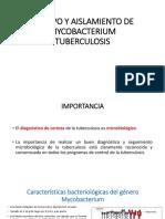CULTIVO Y AISLAMIENTO DE MYCOBACTERIUM TUBERCULOSIS