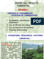 EIA-SESIÓN 3.pdf