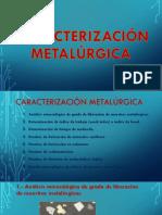 CARACTERIZACIÓN METALÚRGICA.pdf
