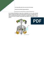 Aplicaciones de BERNOULLI-TORRICELLI en Ingenieria Electrica