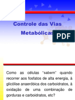 Aula 13. Controle das  Vias  Metabolicas