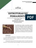 01. Estruturas do Pensamento_alunos.pdf