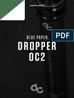 BLUE PAPER 2.pdf