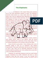 Description of the Elephants