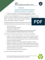 GUIA 10 II_19 AMBI.pdf