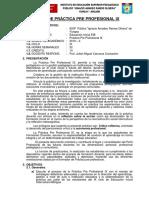 PLAN DE PRACTICA PRE PROFESIONAL IX EIIB 2019-II.docx