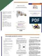 Brochure BSG